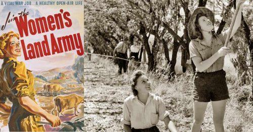 australian-womens-land-army-awla