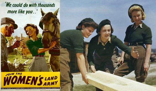 The Women's Land Army (WLA).